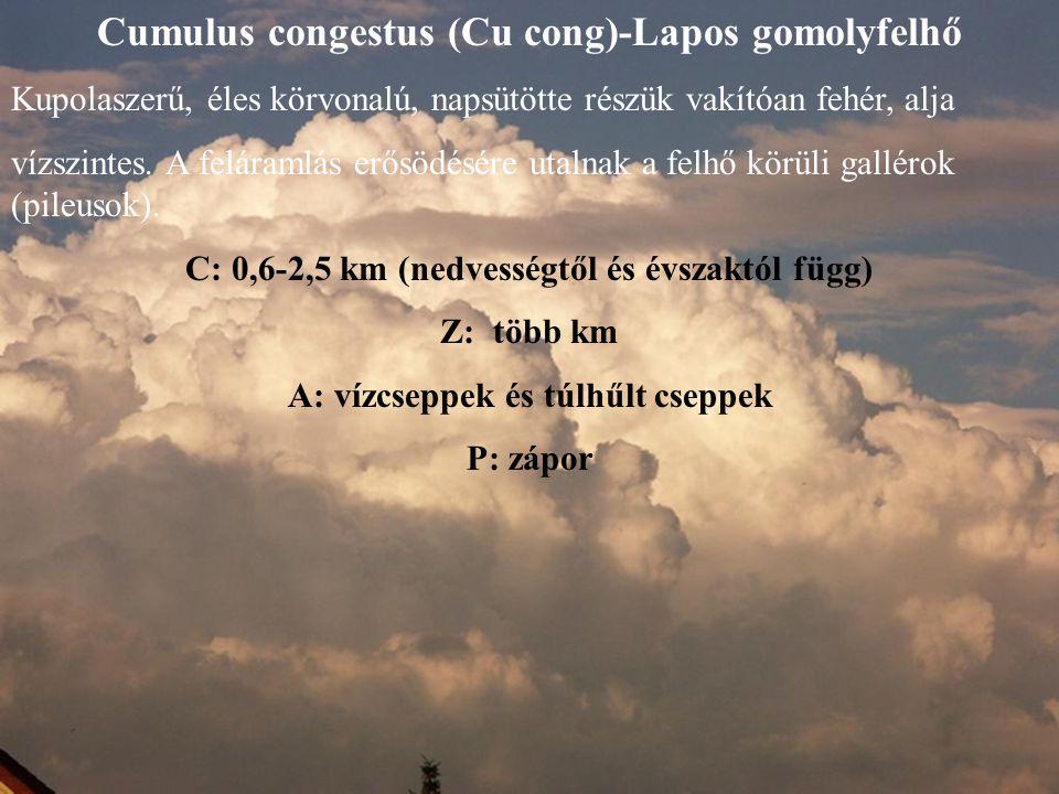 Cumulus congestus (Cu cong)-Lapos gomolyfelhő Kupolaszerű, éles körvonalú, napsütötte részük vakítóan fehér, alja vízszintes. A feláramlás erősödésére