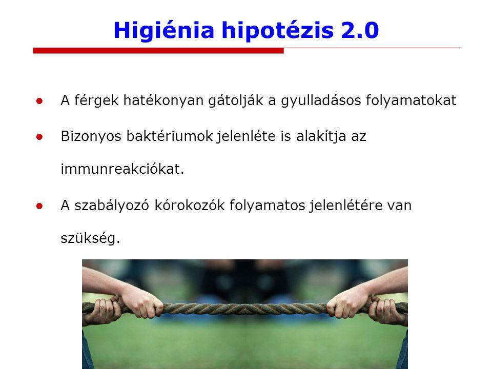 Higiénia hipotézis 2.0 A férgek hatékonyan gátolják a gyulladásos folyamatokat Bizonyos baktériumok jelenléte is alakítja az immunreakciókat.
