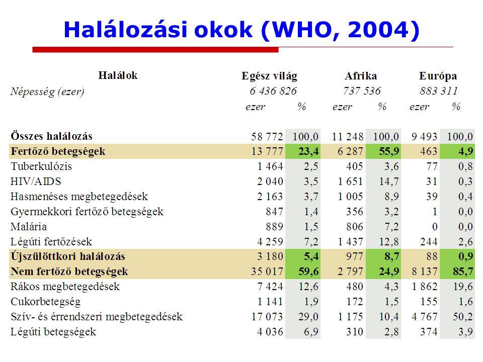 Halálozási okok (WHO, 2004)