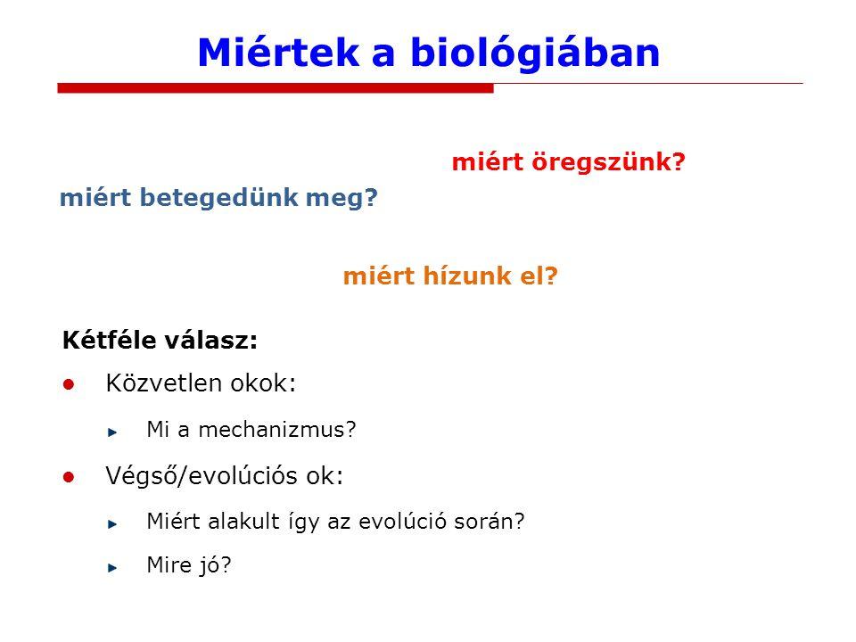 Miértek a biológiában Kétféle válasz: Közvetlen okok: Mi a mechanizmus? Végső/evolúciós ok: Miért alakult így az evolúció során? Mire jó? miért betege