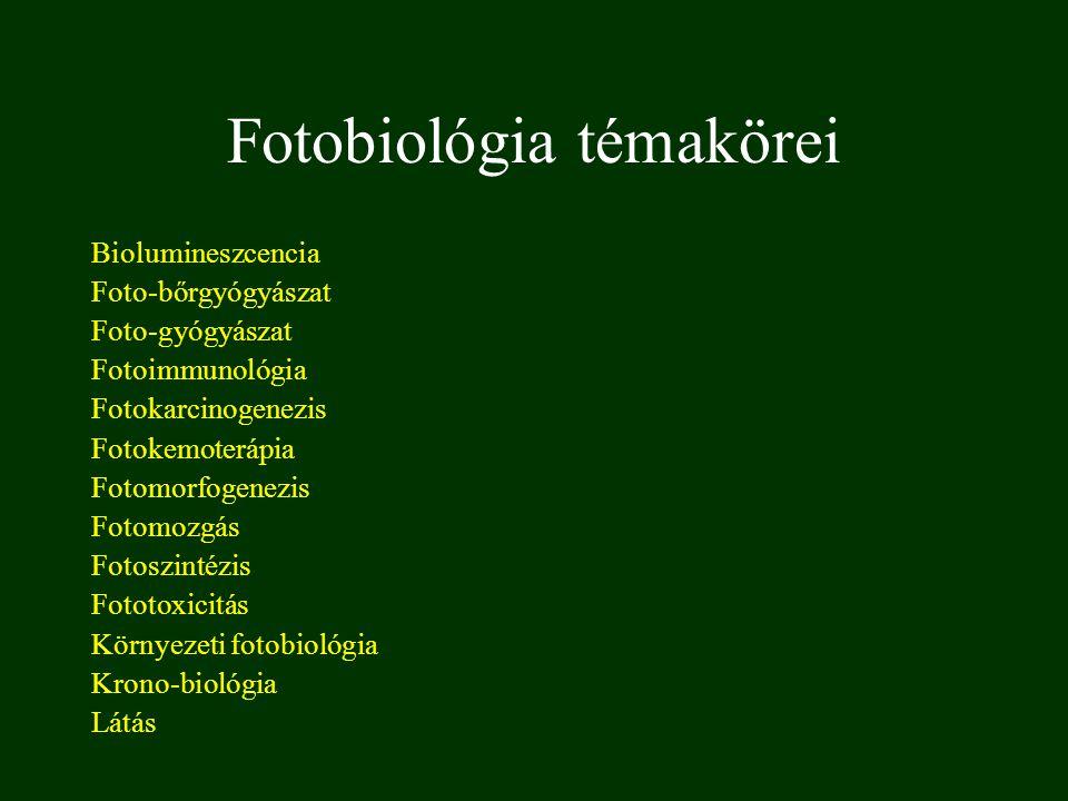 Fotobiológia témakörei Biolumineszcencia Foto-bőrgyógyászat Foto-gyógyászat Fotoimmunológia Fotokarcinogenezis Fotokemoterápia Fotomorfogenezis Fotomo