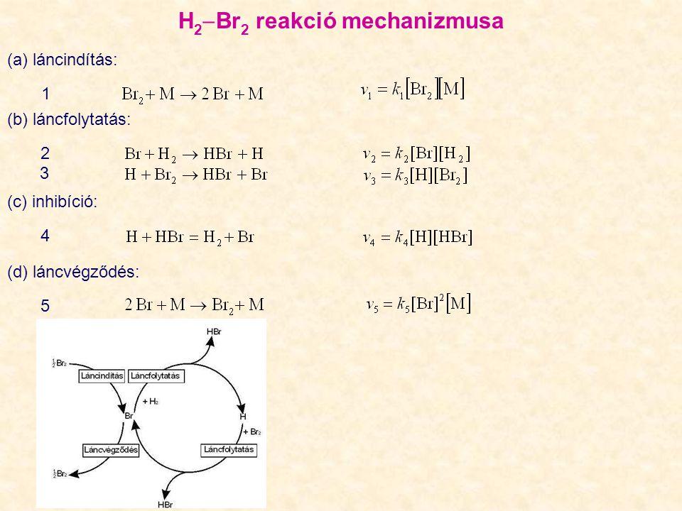 H 2  Br 2 reakció mechanizmusa (a) láncindítás: 1 (b) láncfolytatás: 2 (c) inhibíció: 4 (d) láncvégződés: 5 3