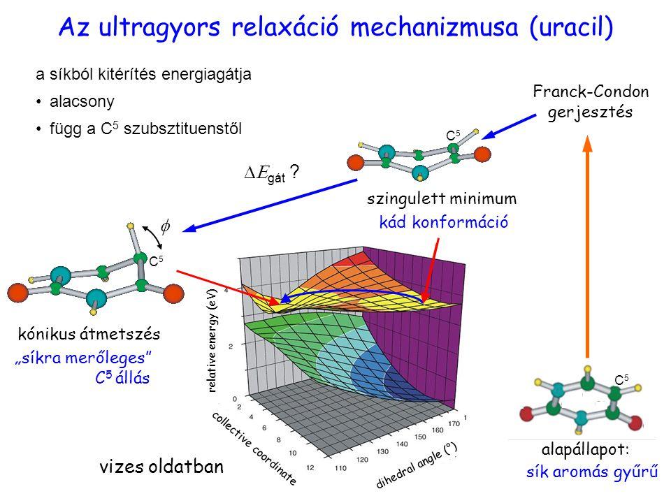 """relaxáció kád konformáció  Franck-Condon gerjesztés szingulett minimum sík aromás gyűrű dihedral angle (°) relative energy (eV) collective coordinate alapállapot: vizes oldatban Az ultragyors relaxáció mechanizmusa (uracil) """"síkra merőleges C 5 állás kónikus átmetszés  gát ."""