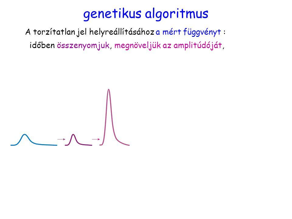 időben összenyomjuk,megnöveljük az amplitúdóját, genetikus algoritmus A torzítatlan jel helyreállításához a mért függvényt :