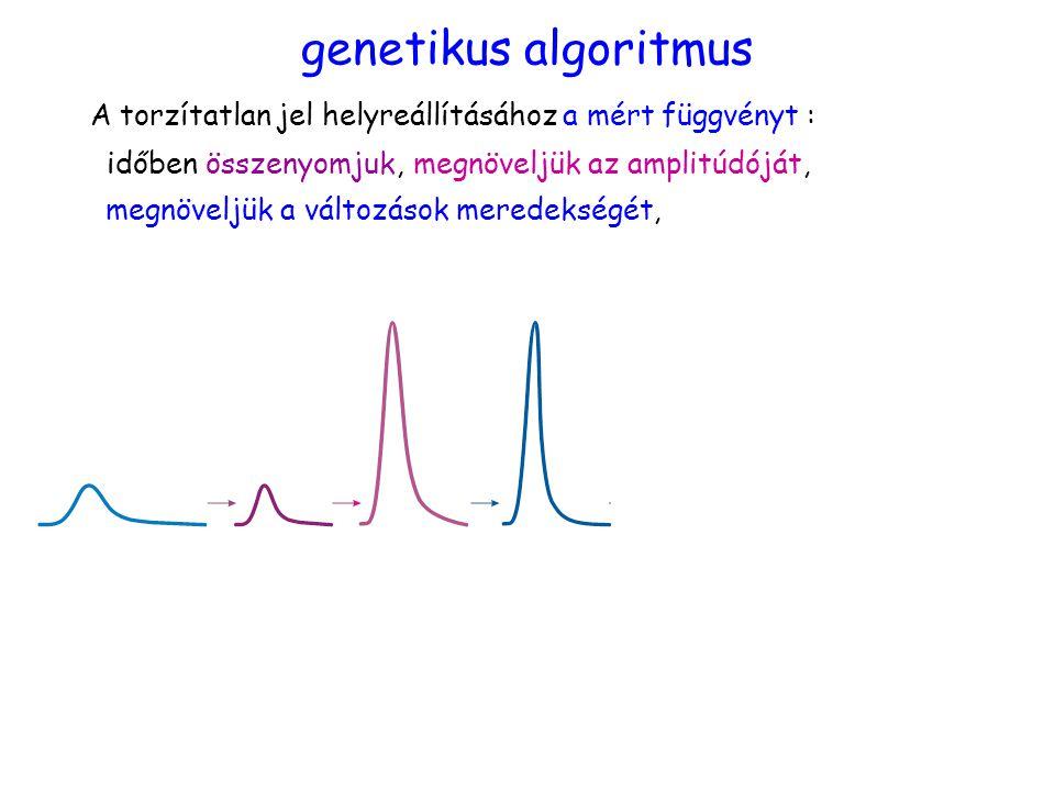 időben összenyomjuk,megnöveljük az amplitúdóját, megnöveljük a változások meredekségét, genetikus algoritmus A torzítatlan jel helyreállításához a mért függvényt :