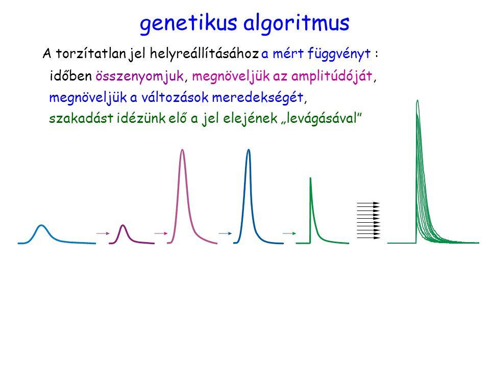 """időben összenyomjuk,megnöveljük az amplitúdóját, megnöveljük a változások meredekségét, szakadást idézünk elő a jel elejének """"levágásával genetikus algoritmus A torzítatlan jel helyreállításához a mért függvényt :"""