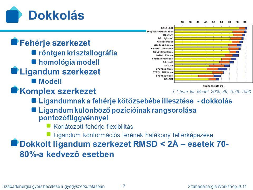 13 Szabadenergia gyors becslése a gyógyszerkutatásbanSzabadenergia Workshop 2011 Dokkolás Fehérje szerkezet röntgen krisztallográfia homológia modell
