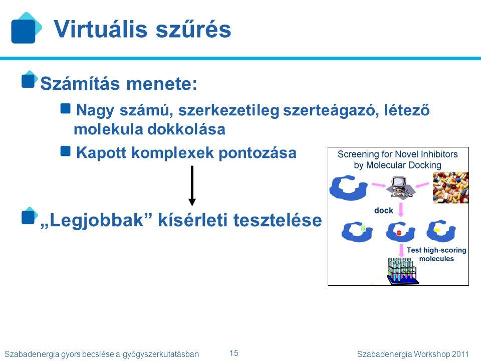 15 Szabadenergia gyors becslése a gyógyszerkutatásbanSzabadenergia Workshop 2011 Virtuális szűrés Számítás menete: Nagy számú, szerkezetileg szerteága