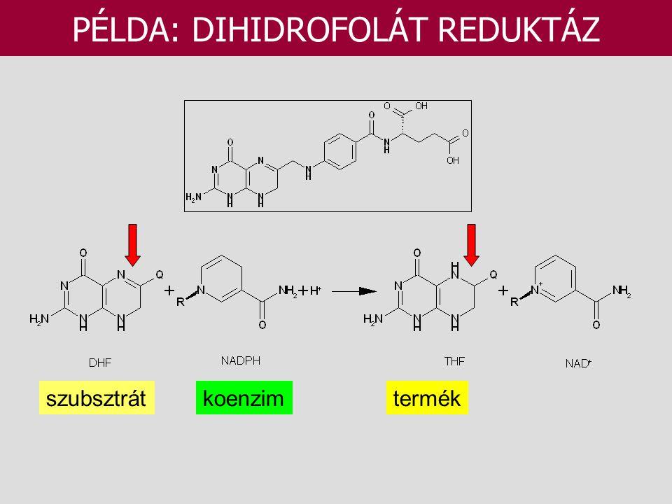szubsztrátkoenzimtermék PÉLDA: DIHIDROFOLÁT REDUKTÁZ