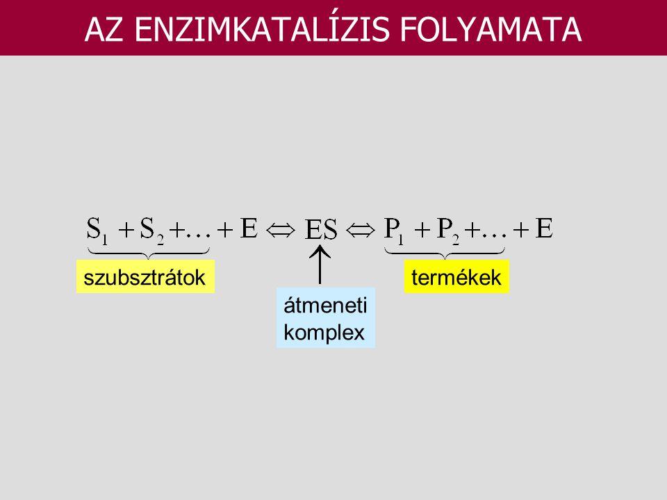 AZ ENZIMKATALÍZIS FOLYAMATA szubsztrátoktermékek átmeneti komplex
