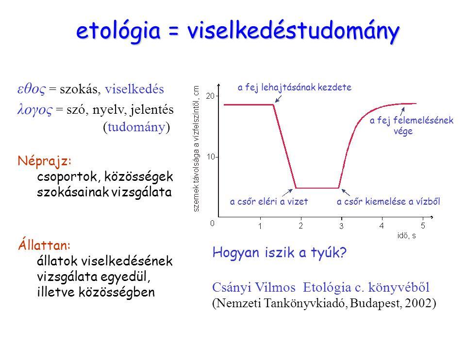 etológia etológia = viselkedéstudomány εθος = szokás, viselkedés λογος = szó, nyelv, jelentés (tudomány) Néprajz: csoportok, közösségek szokásainak vi