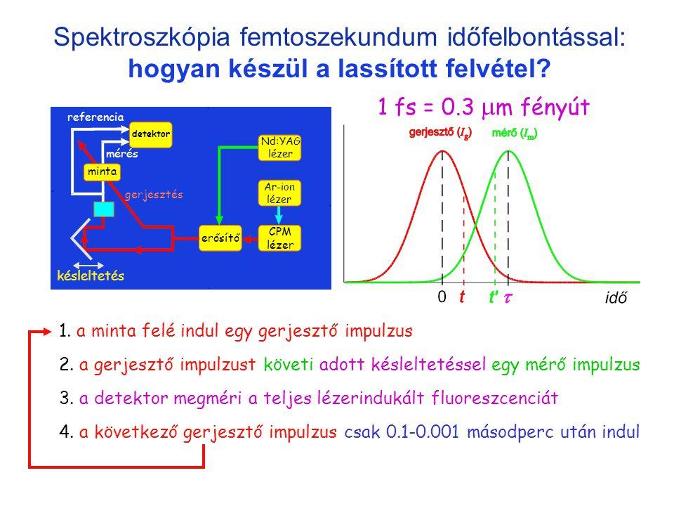 Spektroszkópia femtoszekundum időfelbontással: hogyan készül a lassított felvétel? erősítő minta detektor késleltetés gerjesztés mérés referencia Nd:Y