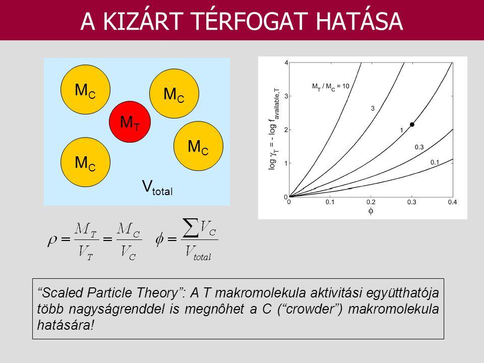 """A KIZÁRT TÉRFOGAT HATÁSA MTMT MCMC MCMC MCMC MCMC V total """"Scaled Particle Theory"""": A T makromolekula aktivitási együtthatója több nagyságrenddel is m"""