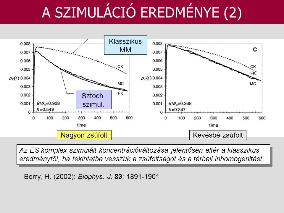 A SZIMULÁCIÓ EREDMÉNYE (2) Berry, H. (2002): Biophys. J. 83: 1891-1901 Az ES komplex szimulált koncentrációváltozása jelentősen eltér a klasszikus ere
