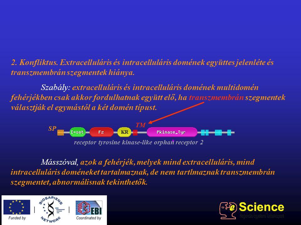 2. Konfliktus. Extracelluláris és intracelluláris domének együttes jelenléte és transzmembrán szegmentek hiánya. Szabály: extracelluláris és intracell