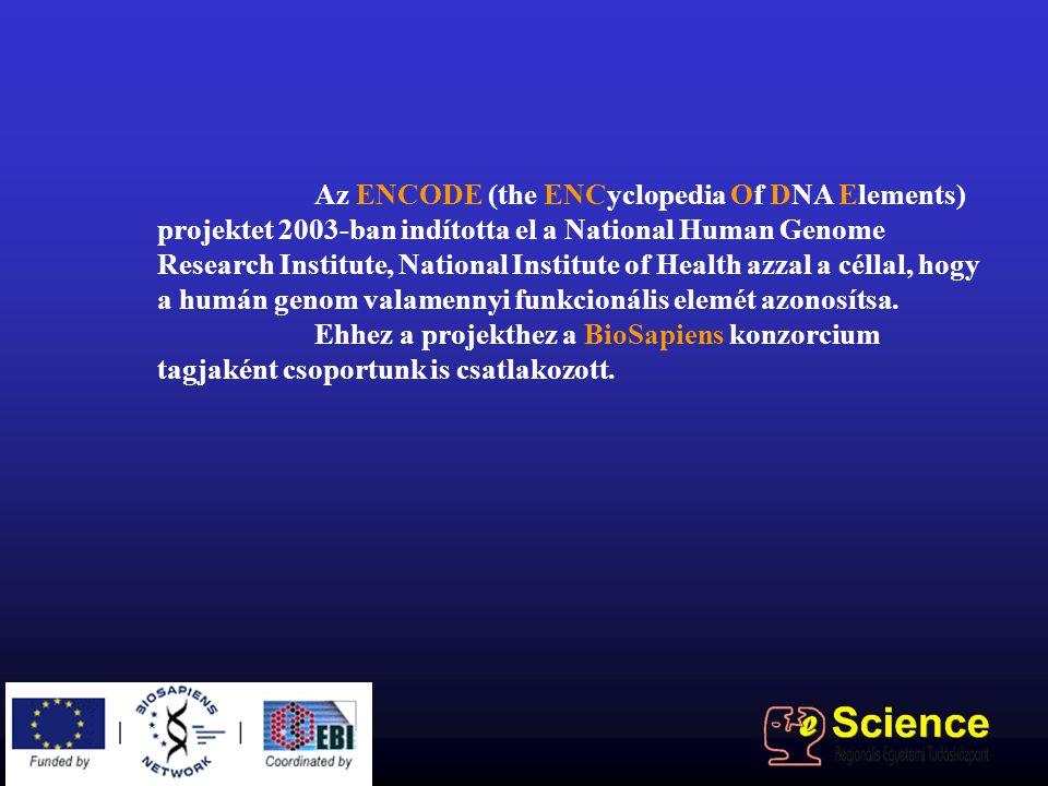 Az ENCODE (the ENCyclopedia Of DNA Elements) projektet 2003-ban indította el a National Human Genome Research Institute, National Institute of Health azzal a céllal, hogy a humán genom valamennyi funkcionális elemét azonosítsa.