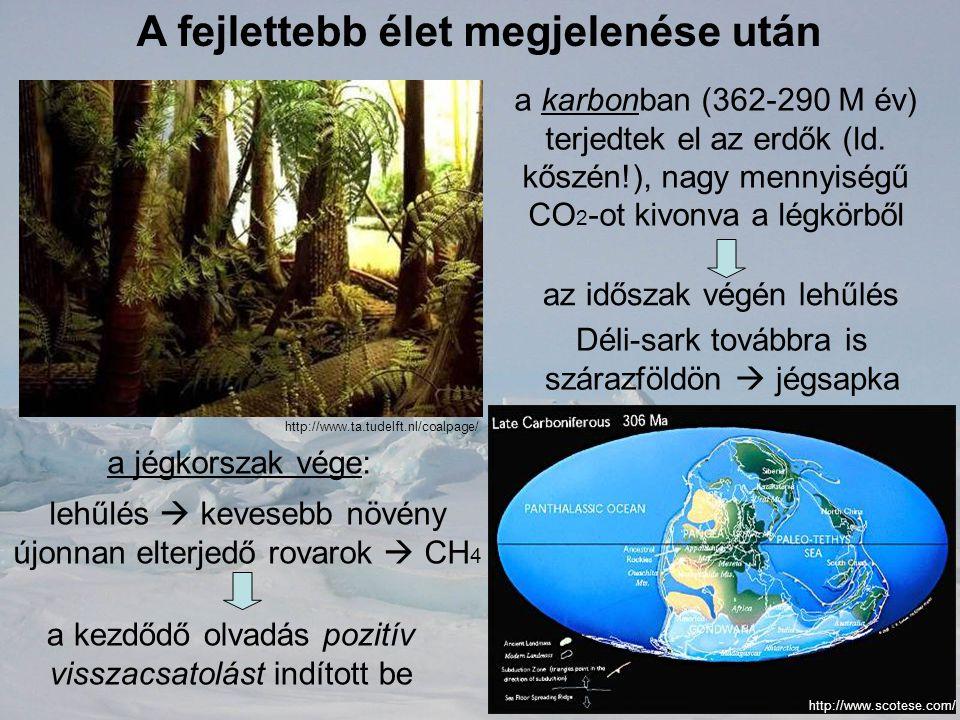 A fejlettebb élet megjelenése után a karbonban (362-290 M év) terjedtek el az erdők (ld. kőszén!), nagy mennyiségű CO 2 -ot kivonva a légkörből az idő