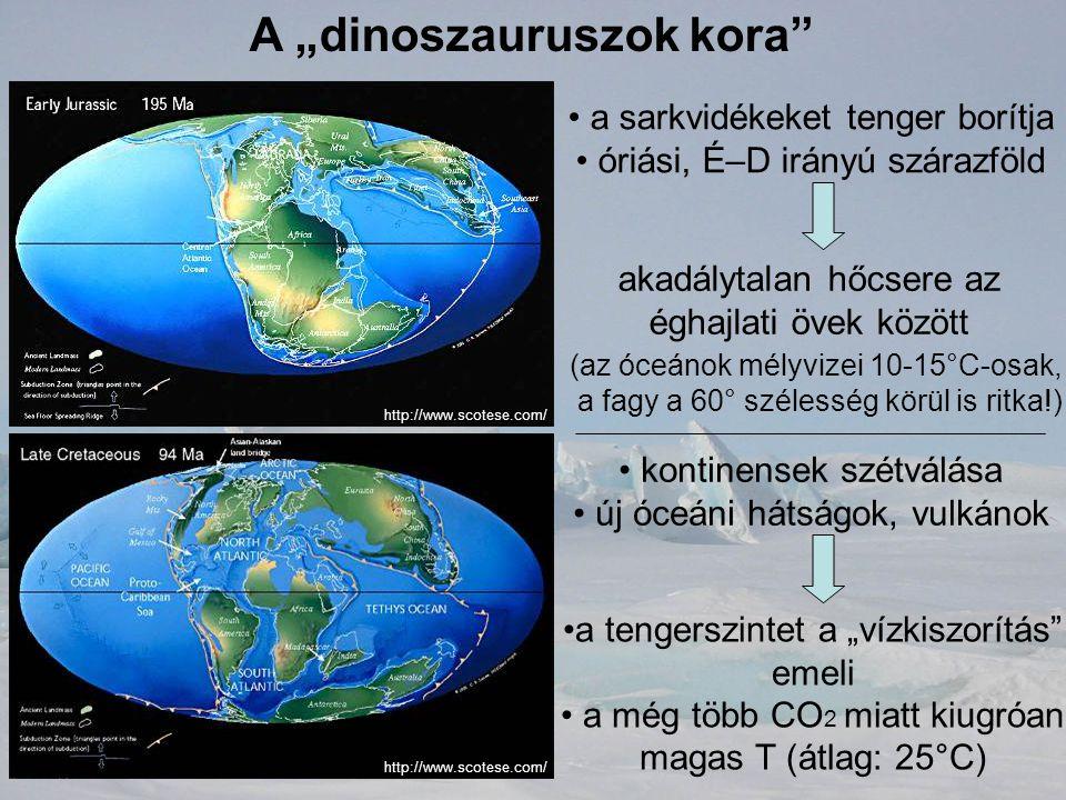 """A """"dinoszauruszok kora"""" a sarkvidékeket tenger borítja óriási, É–D irányú szárazföld akadálytalan hőcsere az éghajlati övek között (az óceánok mélyviz"""