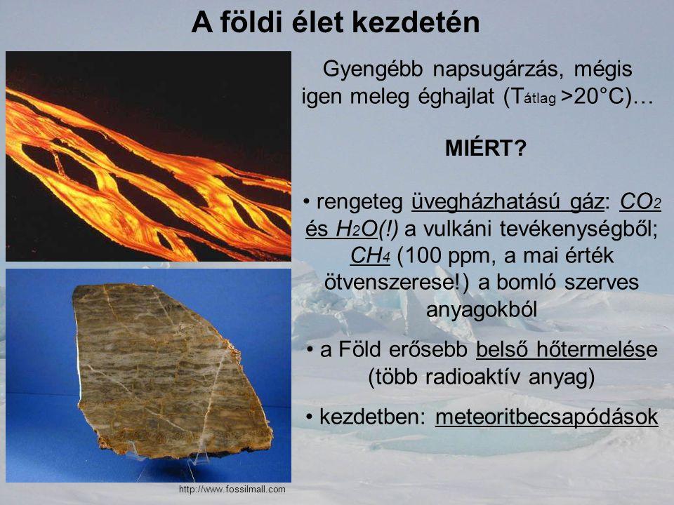 A földi élet kezdetén Gyengébb napsugárzás, mégis igen meleg éghajlat (T átlag >20°C)… MIÉRT? rengeteg üvegházhatású gáz: CO 2 és H 2 O(!) a vulkáni t