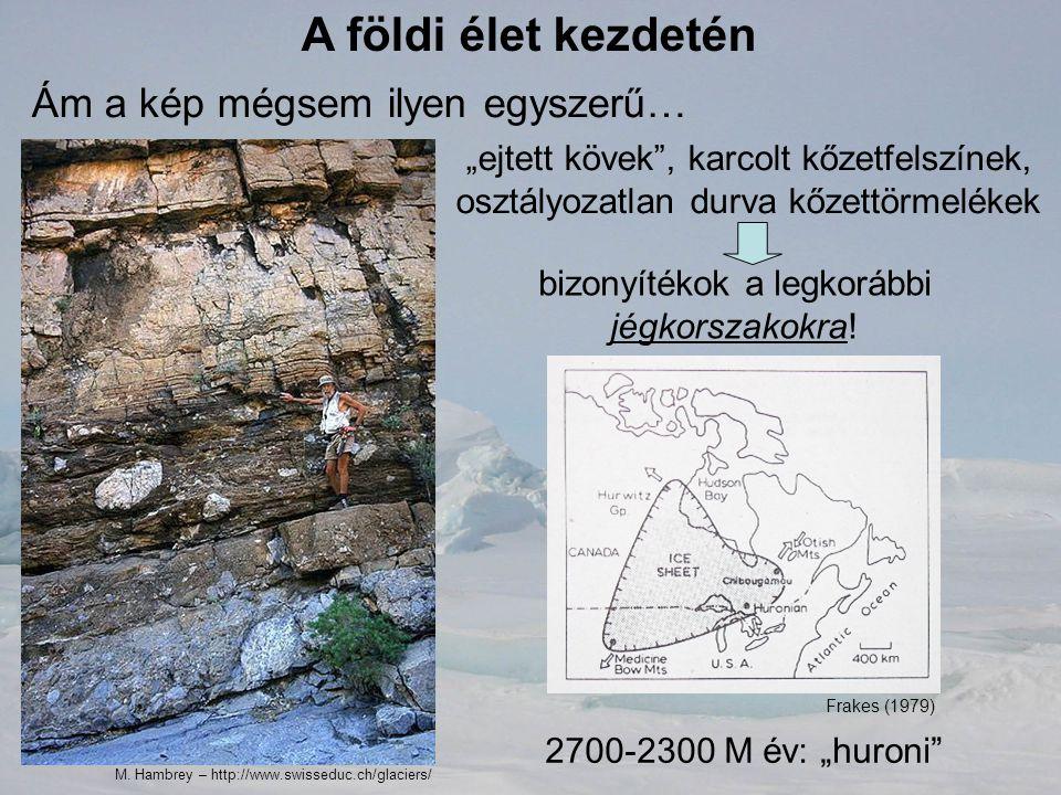 """A földi élet kezdetén Ám a kép mégsem ilyen egyszerű… """"ejtett kövek"""", karcolt kőzetfelszínek, osztályozatlan durva kőzettörmelékek bizonyítékok a legk"""