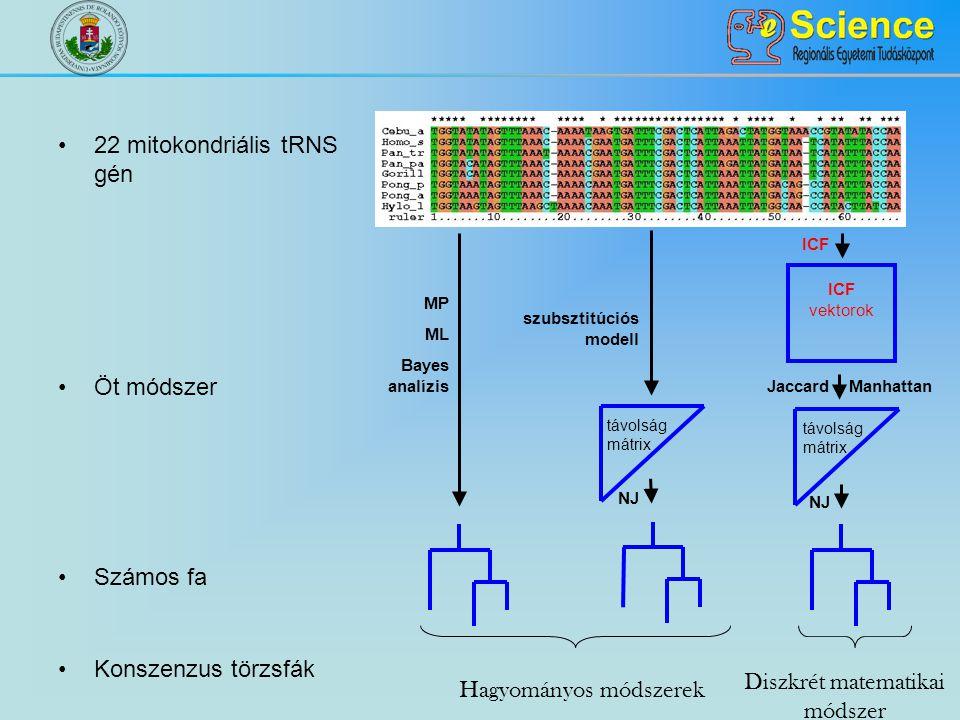 ICF vektorok MP ML Bayes analízis NJ Jaccard ICF Manhattan távolság mátrix NJ szubsztitúciós modell távolság mátrix Hagyományos módszerek Diszkrét matematikai módszer 22 mitokondriális tRNS gén Öt módszer Számos fa Konszenzus törzsfák