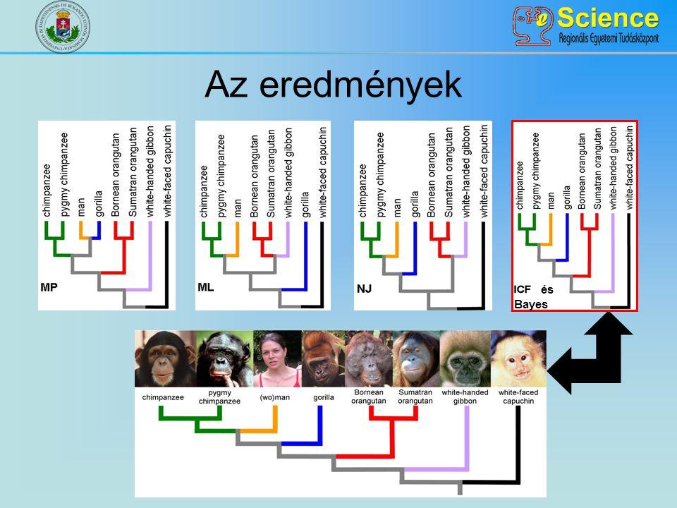 Az eredmények és Bayes