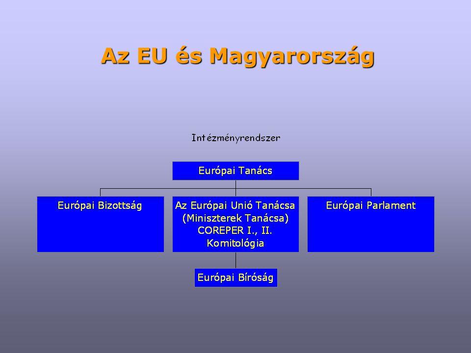 Európai Tanács ≠ Európa Tanács ≠ Tanács Acquis Communautaire Európai Beruházási Bank Európai Konvent Európai Központi Bank Európai ombudsman Európai Számvevőszék Europol Eurojust Főigazgatóságok (Directorate General)