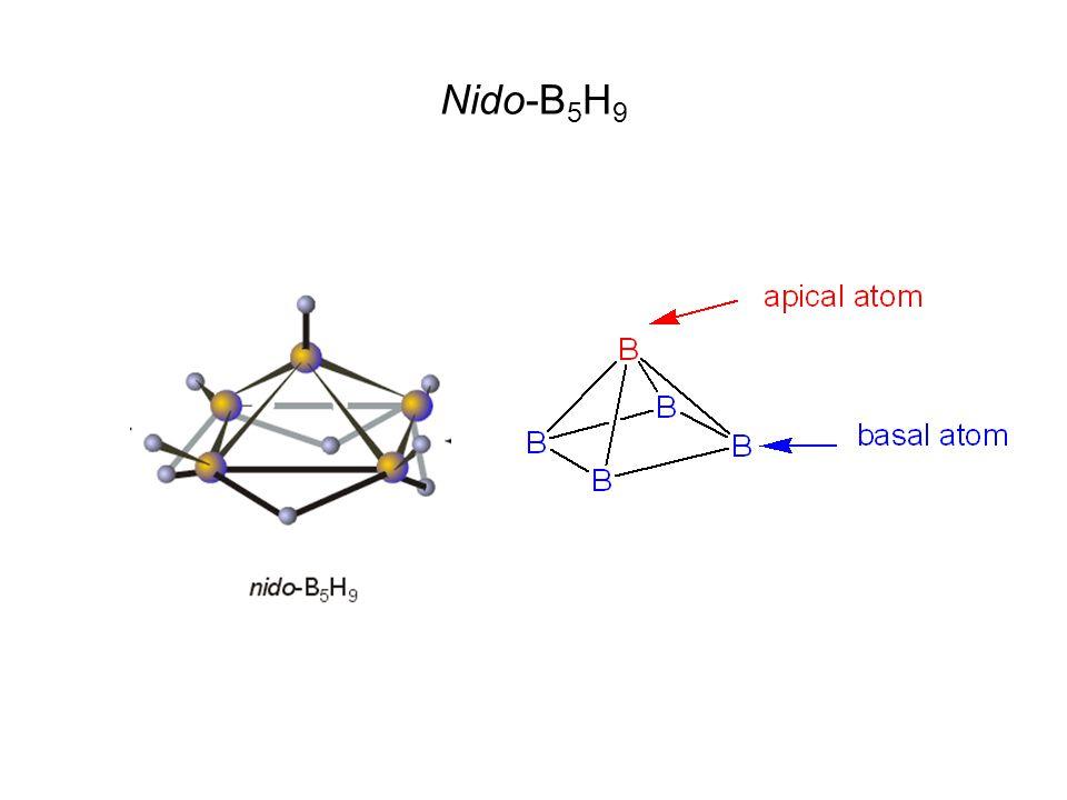 Nido-B 5 H 9
