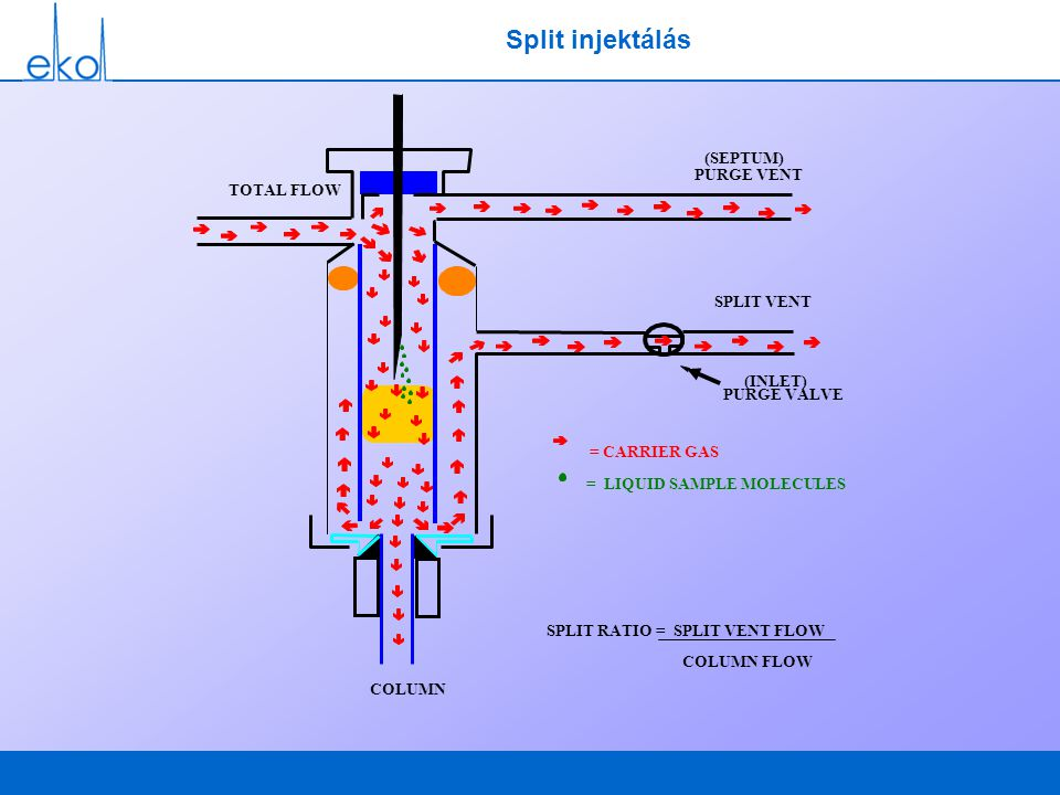 COLUMN (INLET) (SEPTUM) SPLIT VENT TOTAL FLOW = CARRIER GAS = SAMPLE MOLECULES = SOLVENT MOLECULES PURGE VENT PURGE VALVE Split injektálás