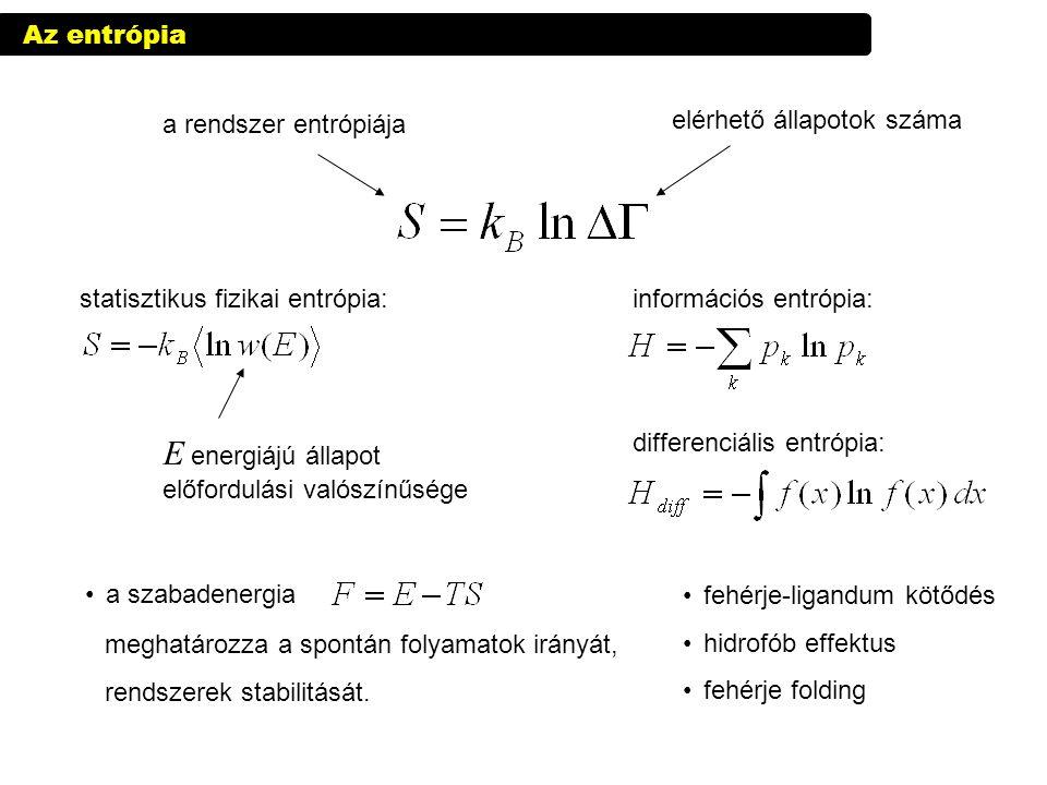 információs entrópia: differenciális entrópia: Az entrópia a rendszer entrópiája elérhető állapotok száma statisztikus fizikai entrópia: E energiájú á