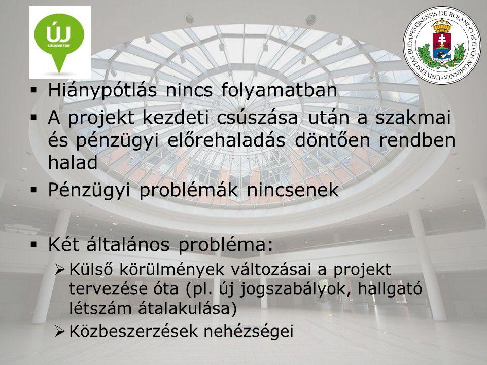  Hiánypótlás nincs folyamatban  A projekt kezdeti csúszása után a szakmai és pénzügyi előrehaladás döntően rendben halad  Pénzügyi problémák nincsenek  Két általános probléma:  Külső körülmények változásai a projekt tervezése óta (pl.