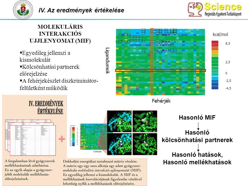 kcal/mol 8,5 2,5 0 -2,5 -4,5 Fehérjék Ligandumok Hasonló MIF Hasonló kölcsönhatási partnerek Hasonló hatások, Hasonló mellékhatások IV. Az eredmények