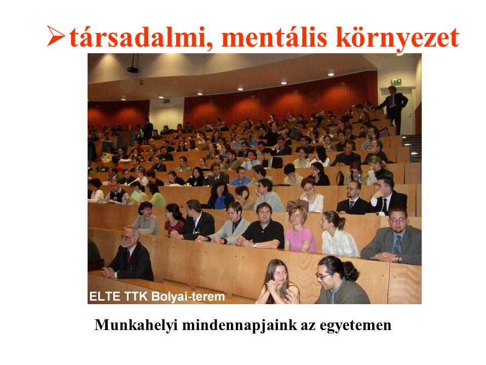  társadalmi, mentális környezet Munkahelyi mindennapjaink az egyetemen