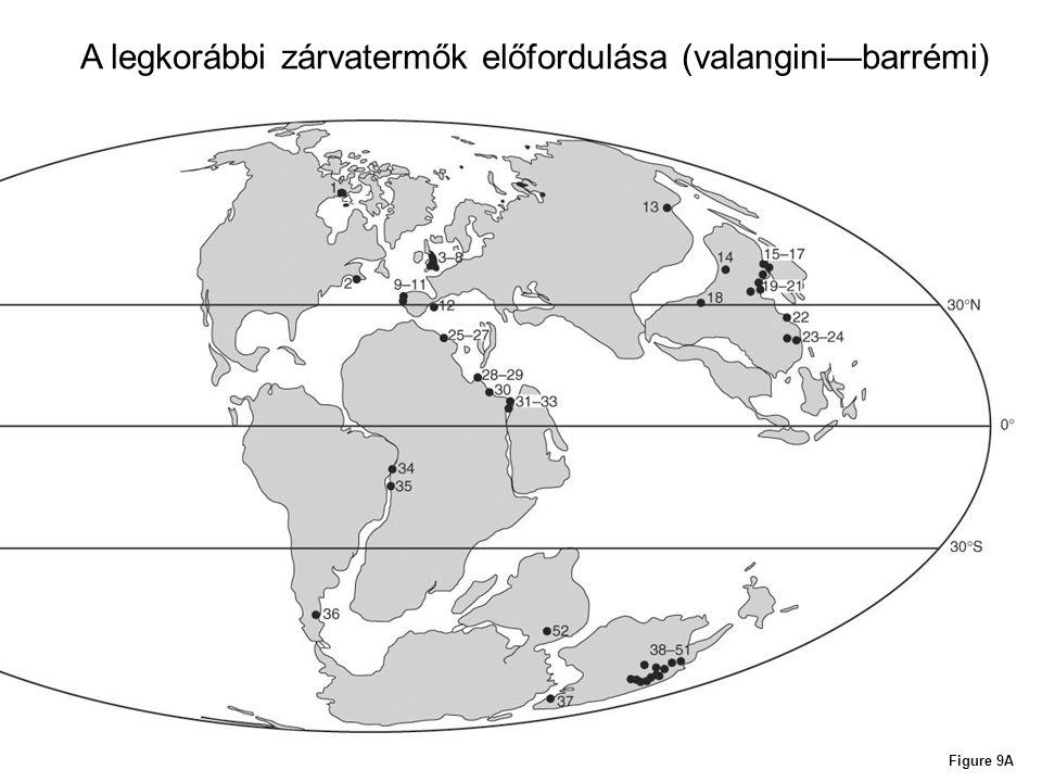 Figure 9A A legkorábbi zárvatermők előfordulása (valangini—barrémi)