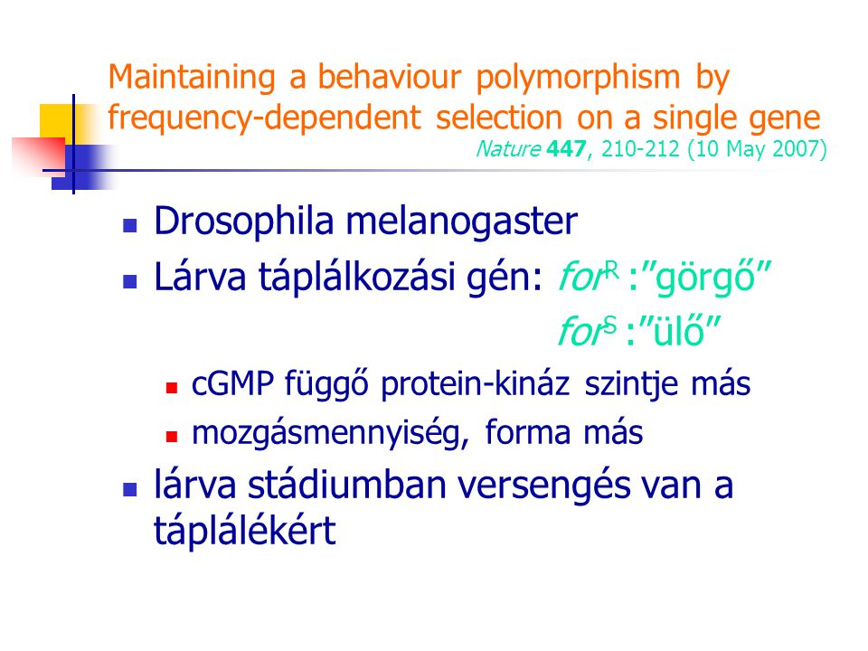 Maintaining a behaviour polymorphism by frequency-dependent selection on a single gene Nature 447, 210-212 (10 May 2007) Drosophila melanogaster Lárva
