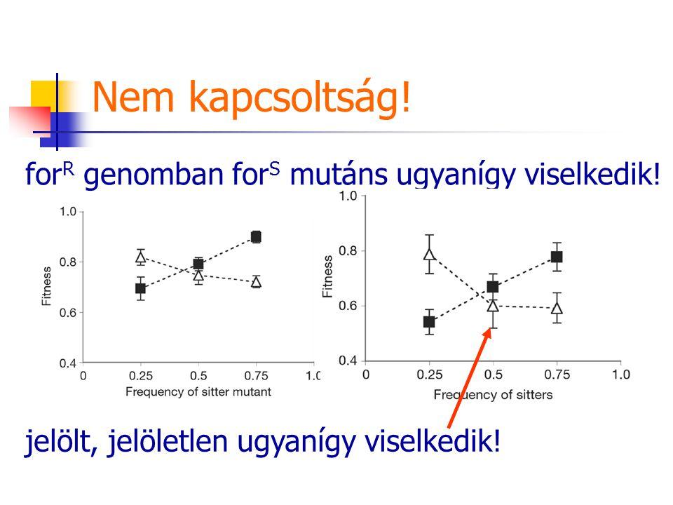 Nem kapcsoltság! for R genomban for S mutáns ugyanígy viselkedik! jelölt, jelöletlen ugyanígy viselkedik!