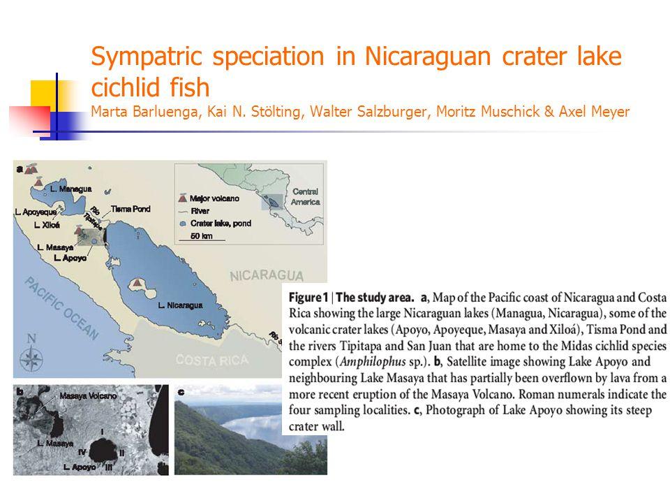 Sympatric speciation in Nicaraguan crater lake cichlid fish Marta Barluenga, Kai N. Stölting, Walter Salzburger, Moritz Muschick & Axel Meyer