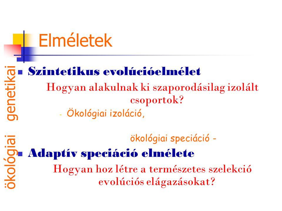 Elméletek Szintetikus evolúcióelmélet Hogyan alakulnak ki szaporodásilag izolált csoportok? - Ökológiai izoláció, ökológiai speciáció - Adaptív speciá