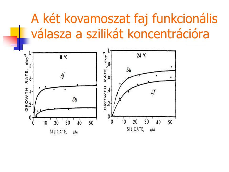 A két kovamoszat faj funkcionális válasza a szilikát koncentrációra
