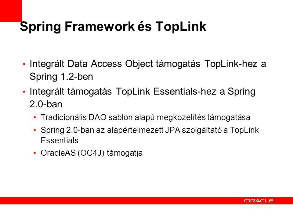 Spring Framework és TopLink Integrált Data Access Object támogatás TopLink-hez a Spring 1.2-ben Integrált támogatás TopLink Essentials-hez a Spring 2.0-ban Tradicionális DAO sablon alapú megközelítés támogatása Spring 2.0-ban az alapértelmezett JPA szolgáltató a TopLink Essentials OracleAS (OC4J) támogatja