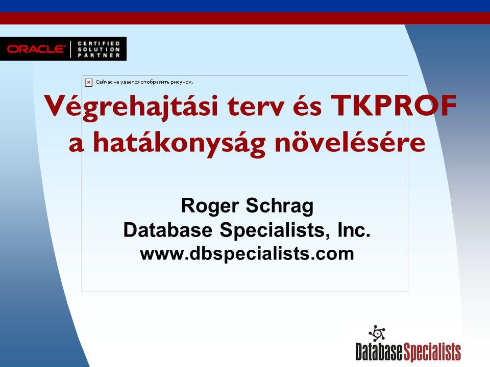1 Végrehajtási terv és TKPROF a hatákonyság növelésére Roger Schrag Database Specialists, Inc.
