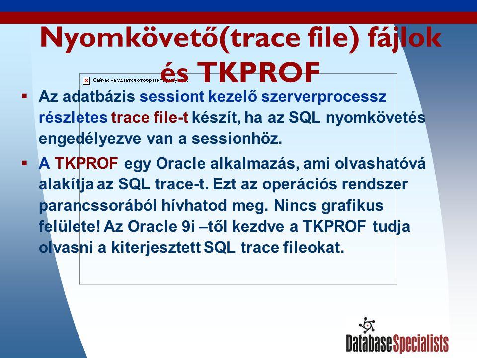 18 Nyomkövető(trace file) fájlok és TKPROF  Az adatbázis sessiont kezelő szerverprocessz részletes trace file-t készít, ha az SQL nyomkövetés engedélyezve van a sessionhöz.