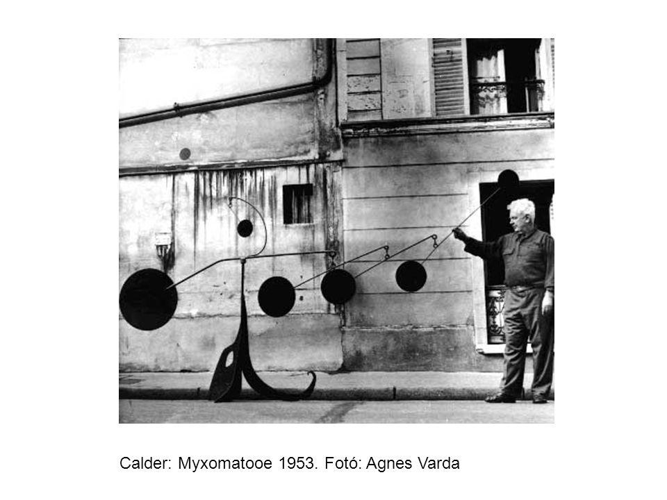 Calder: Myxomatooe 1953. Fotó: Agnes Varda