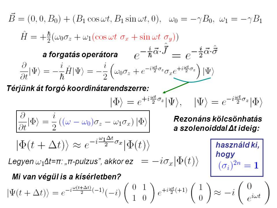 """a forgatás operátora Térjünk át forgó koordinátarendszerre: Legyen Δt=π: """"π-pulzus , akkor ez Mi van végül is a kísérletben."""