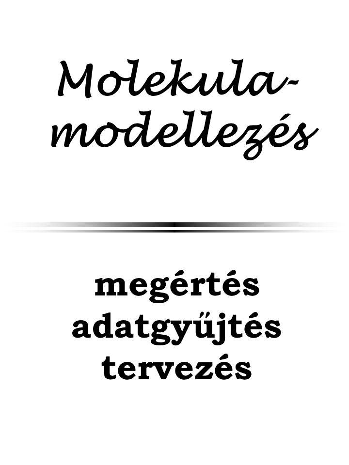 Molekula- modellezés megértés adatgyűjtés tervezés