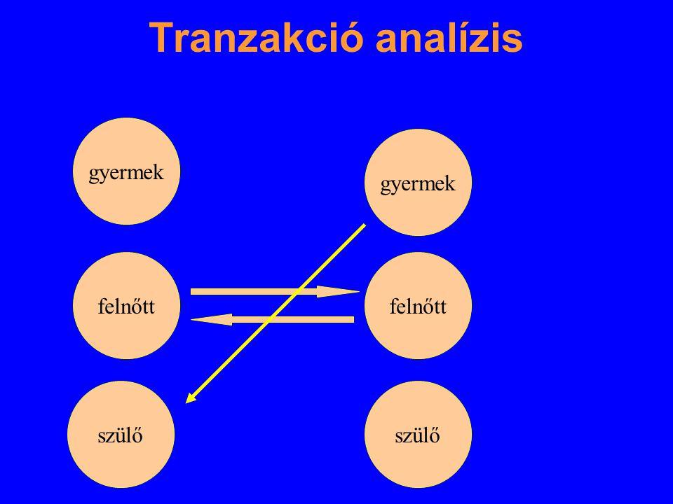 Tranzakció analízis gyermek felnőtt szülő gyermek felnőtt szülő