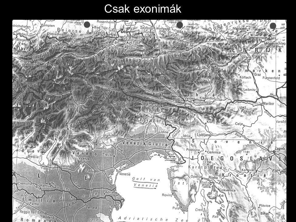 Csak exonimák