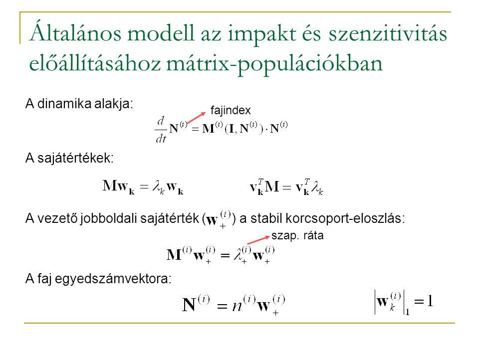 Általános modell az impakt és szenzitivitás előállításához mátrix-populációkban A dinamika alakja: fajindex A sajátértékek: A vezető jobboldali sajáté