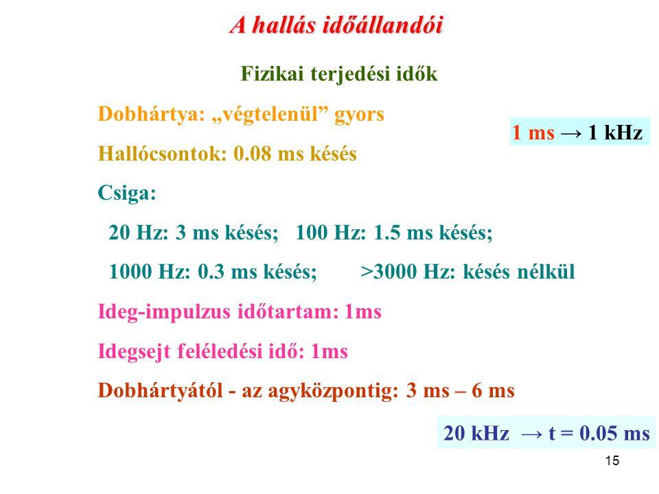 """15 Dobhártya: """"végtelenül"""" gyors Hallócsontok: 0.08 ms késés Csiga: 20 Hz: 3 ms késés; 100 Hz: 1.5 ms késés; 1000 Hz: 0.3 ms késés;>3000 Hz: késés nél"""