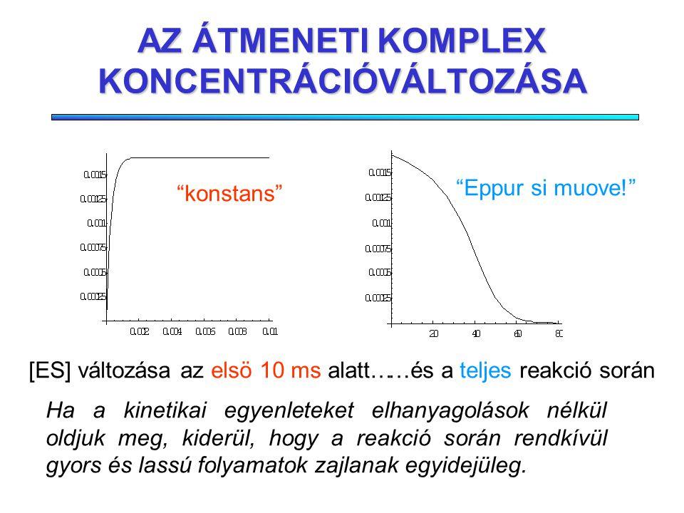 MICHAELIS-MENTEN KINETIKA (4) Egyszerû modell Jó fenomenologikus leírást ad A paraméterek (v max, K m ) mérhetôek